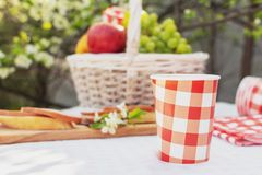Summertime Outdoors Picnic Healthy Lunch Time stock photo