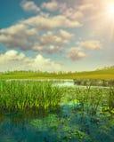 summertime Paisagem sazonal abstrata fotografia de stock
