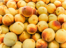 Summertime Peaches Royalty Free Stock Photography