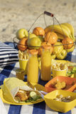 Summertime. A picnic on the beach. Burgers and pitas, vegetables. And fruits. Selective focus Royalty Free Stock Image