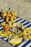 Summertime. A picnic on the beach. Burgers and pitas, vegetables. And fruits. Selective focus Royalty Free Stock Images