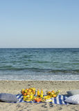 Summertime. A picnic on the beach. Burgers and pitas, vegetables. And fruits. Selective focus Stock Images
