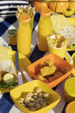 Summertime. A picnic on the beach. Burgers and pitas, vegetables and fruits. Selective focus Stock Photos