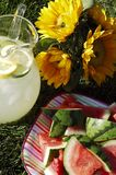 Summertime Refreshments Royalty Free Stock Photography