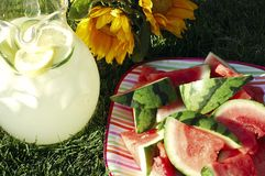Summertime Refreshments royalty free stock images