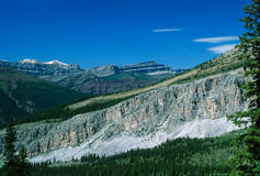 Summertime Rocky Mountain Landscape Stock Images