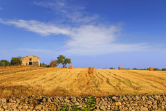 Summertime: rural landscape. Harvested field with bales of hay.- (Apulia) ITALY- Stock Photography