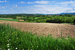Summertime rural landscape Royalty Free Stock Photos