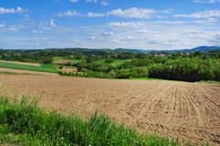 Summertime rural landscape Stock Image