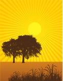 Summertime Tree Background vector illustration