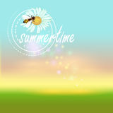 Summertime vector background Royalty Free Stock Photography