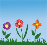 Summery blom- design Arkivbilder