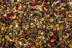 Summery herbal blossom tea Stock Photo
