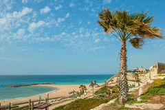 Summery Mediterranean Coast Royalty Free Stock Image