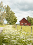 Summery scenery with barn. In the south of Sweden Royalty Free Stock Photo