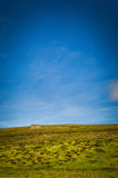 Summery shed on a mountain in scotland. Summery little shed on a mountain in scotland Royalty Free Stock Photography