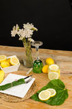 Summery table setting Royalty Free Stock Photos