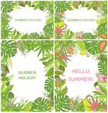 Summery tropical green backgrounds Stock Images