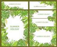 Summery tropical green banners. Set of summery tropical green banners Royalty Free Stock Photography