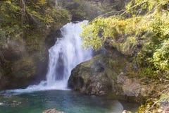 Summieren Sie Wasserfall in der Vintgar-Schlucht in Slowenien Stockbilder