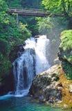 Summieren Sie Wasserfall, verlaufene, julianische Alpen, Slowenien Stockfoto