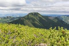 Summit Bobrowiec (Bobrovec) with crags Mnichy Chocholowskie Stock Image