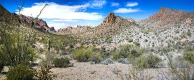 Summit Canyon in the Kofa Wilderness. Summit Canyon in the Kofa Mountains Wilderness in Yuma County near Quartzite Arizona stock photo