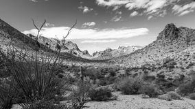 Summit Canyon in the Kofa Wilderness in Black and White. Summit Canyon in the Kofa Mountains Wilderness in Yuma County near Quartzite Arizona stock photography
