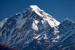 Summit of Dhaulagiri from South. View of Dhaulagiri from Jaljala La, Dhaulagiri Himal, Nepal Stock Photos