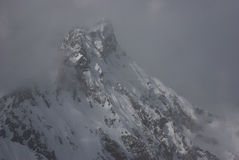 Summit in fog. Summit in Julian alps in Slovenia covered with first snow and surrounded with fog stock image