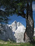 Summit of Jalovec in Julian Alps Royalty Free Stock Photo