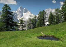 Summit of Jalovec in Julian Alps Stock Images