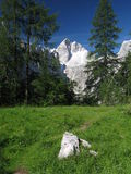 Summit of Jalovec - Triglav national park. Stock Images