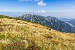 Summit - Kominiarski Wierch. royalty free stock image