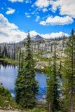 Summit Lake Idaho stock images