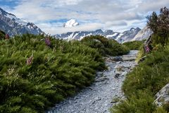 Trail toward Mt Cook, highest peak in New Zealand Royalty Free Stock Photo