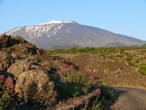 The summit of Mount Etna stock photography