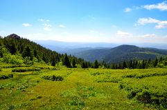 Summit of mountain Grosser Arber, Germany. Stock Photography