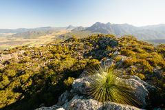 On the summit in Mt Maroon. Mount Barney National Park,QLD, Australia Royalty Free Stock Photos