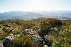 On the summit in Mt Maroon. Mount Barney National Park,QLD,Australia Royalty Free Stock Image