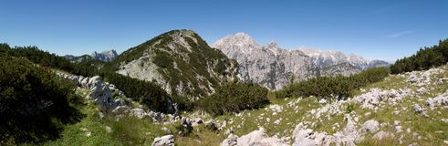 Summit of Rjavina from hillside of Debela pec mountain in Triglav national park in Julian Alps in Slovenia. Summit of Rjavina from hillside of Debela pec Stock Photos
