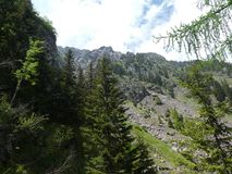 Summit rock panorama landscap of the mountains in italy south tyrol europe. Europe italy south tyrol mountains summit rock trees forest nature forest trees royalty free stock image