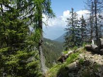 Summit rock panorama landscap of the mountains in italy south tyrol europe. Europe italy south tyrol mountains summit rock trees forest nature forest trees stock images