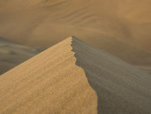Summit of a sand dune Royalty Free Stock Photography
