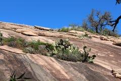 Summit trail at Enchanted Rock royalty free stock image