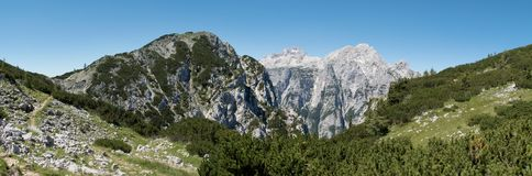 Summit of Triglav and Rjavina from hillside of Debela pec mountain in Triglav national park in Julian Alps in Slovenia. Summit of Triglav and Rjavina from Stock Photo