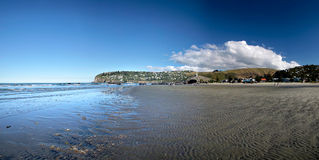Sumner Beach near Christchurch Stock Photography