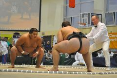sumo πρωταθλημάτων Στοκ φωτογραφία με δικαίωμα ελεύθερης χρήσης