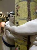 sumo Fotografia Royalty Free