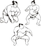 Sumo Stock Photos